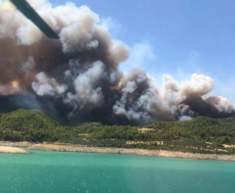 У турецькій Анталії спалахнула сильна лісова пожежа